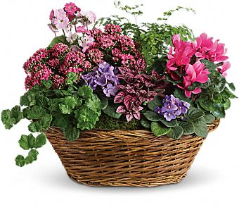 Blooming Basket