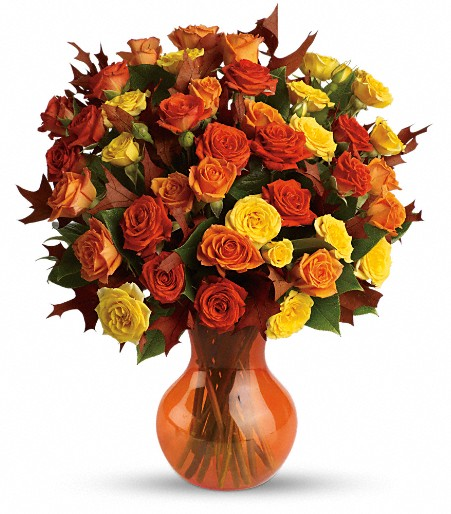 Fall Colored Roses