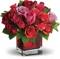 Red Pink Rose Cube I