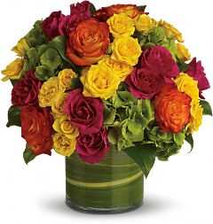 Colorful Rounds and Roses Anniversary Flowers