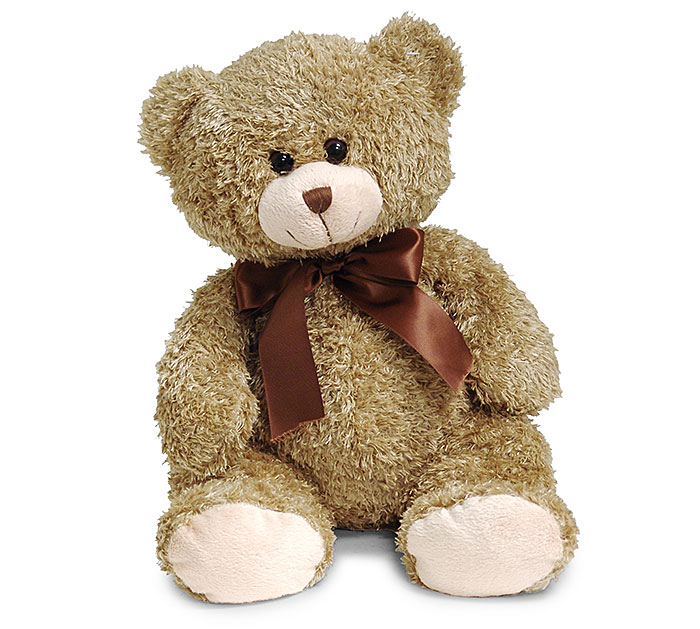 vermont teddy bear essay